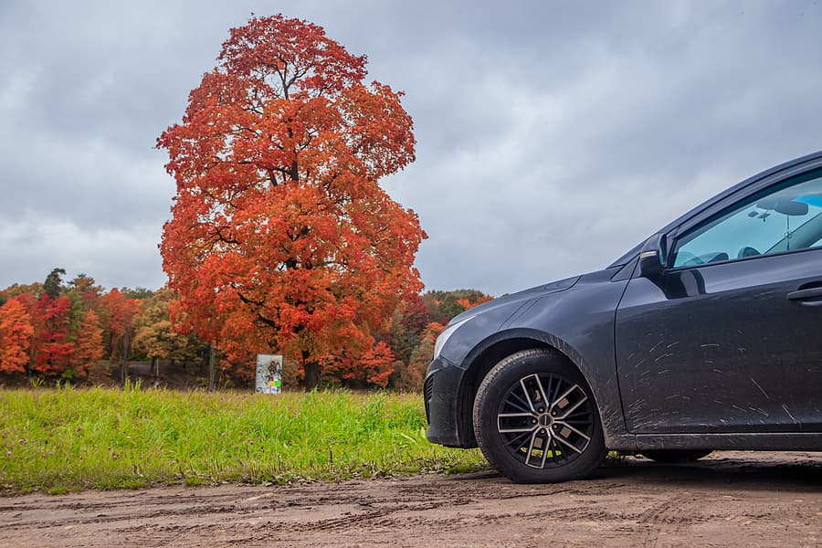 Tackle Fall Car Care Now That Summer is Over
