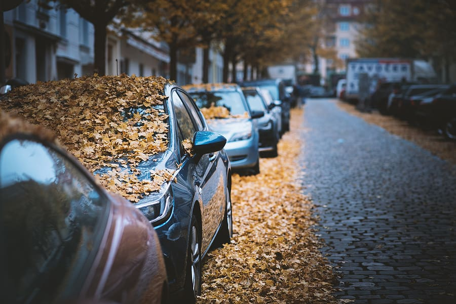 """Fall Can """"Leaf"""" Your Car with Problems"""